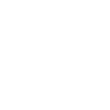 Zorin Logotype White